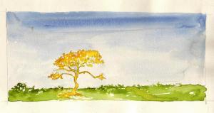 Albero giallo - 1996
